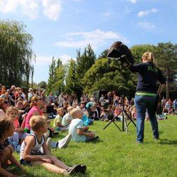 Terugblik: Roofvogelshow in Plaswijckpark